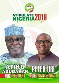 Nigerians Vote 2019