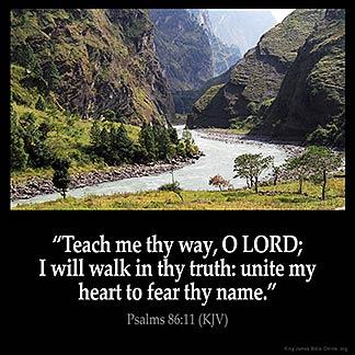 Psalms_86-11-1: Teach me thy way, O LORD; I will walk in thy truth: unite my heart to fear thy name.